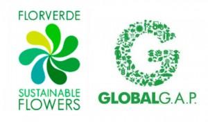 Logo-Florverde-Global